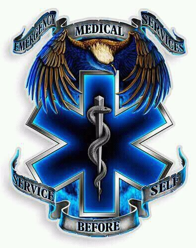 service before self ems logos pinterest ems tattoos and tattoo rh pinterest com ems lagos ems logistics uk ltd