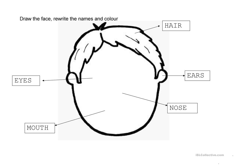 Face Worksheet