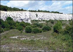 Monkton Nature Reserve http://www.monkton-reserve.org/#