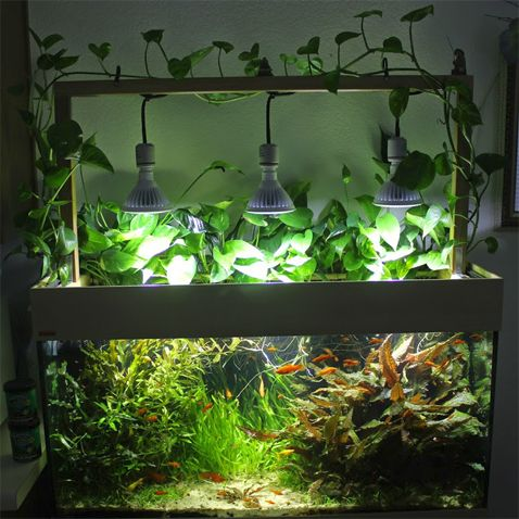 do it yourself diy led aquarium lighting system clever ideas diy pinterest aquarium. Black Bedroom Furniture Sets. Home Design Ideas