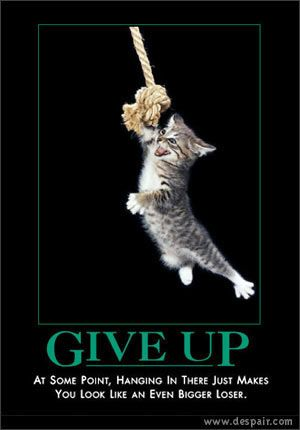 22 Inspirational Cat Posters That Will Motivate And Entertain You