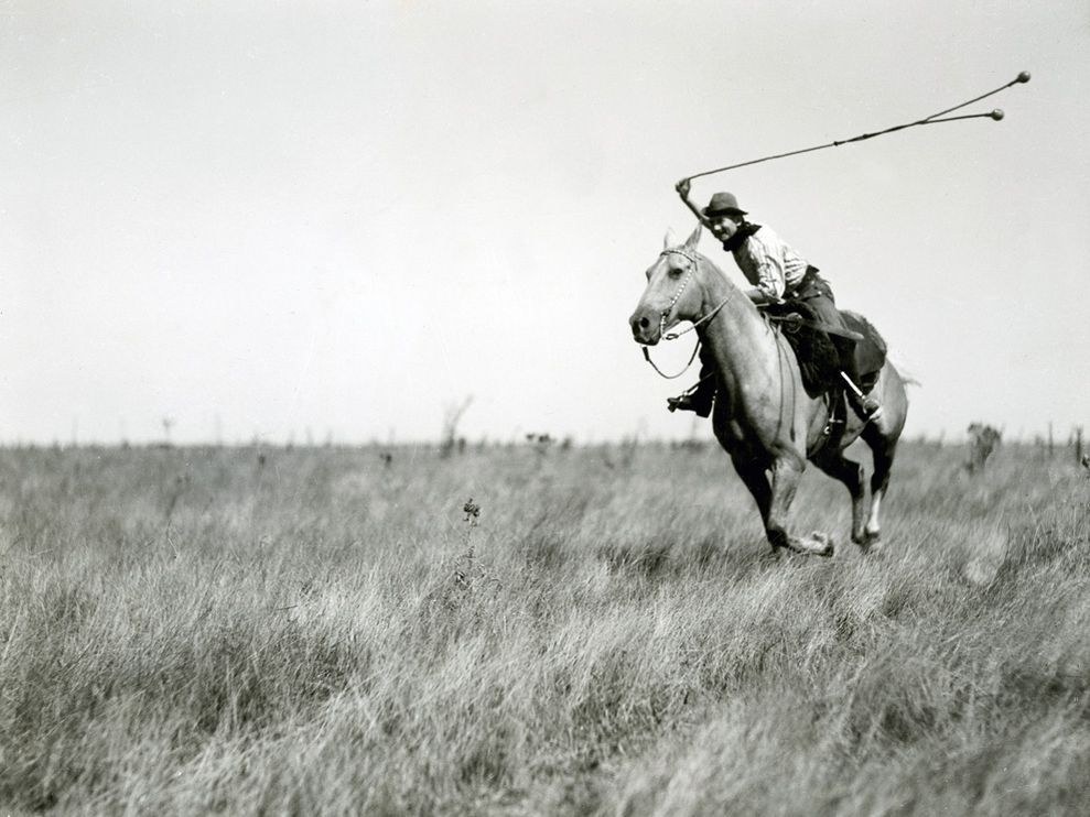 boleadoras, cowboy, history, horse, national geographic