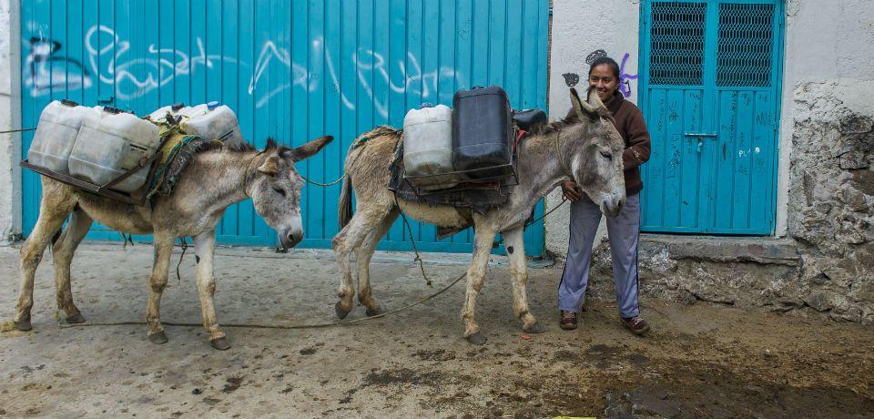 """""""El agua es nuestra, carajo!"""" """"El H20 no es un negocio."""" Nearly 500 million people are without clean water in Mexico. New legislation to fix water problems..."""