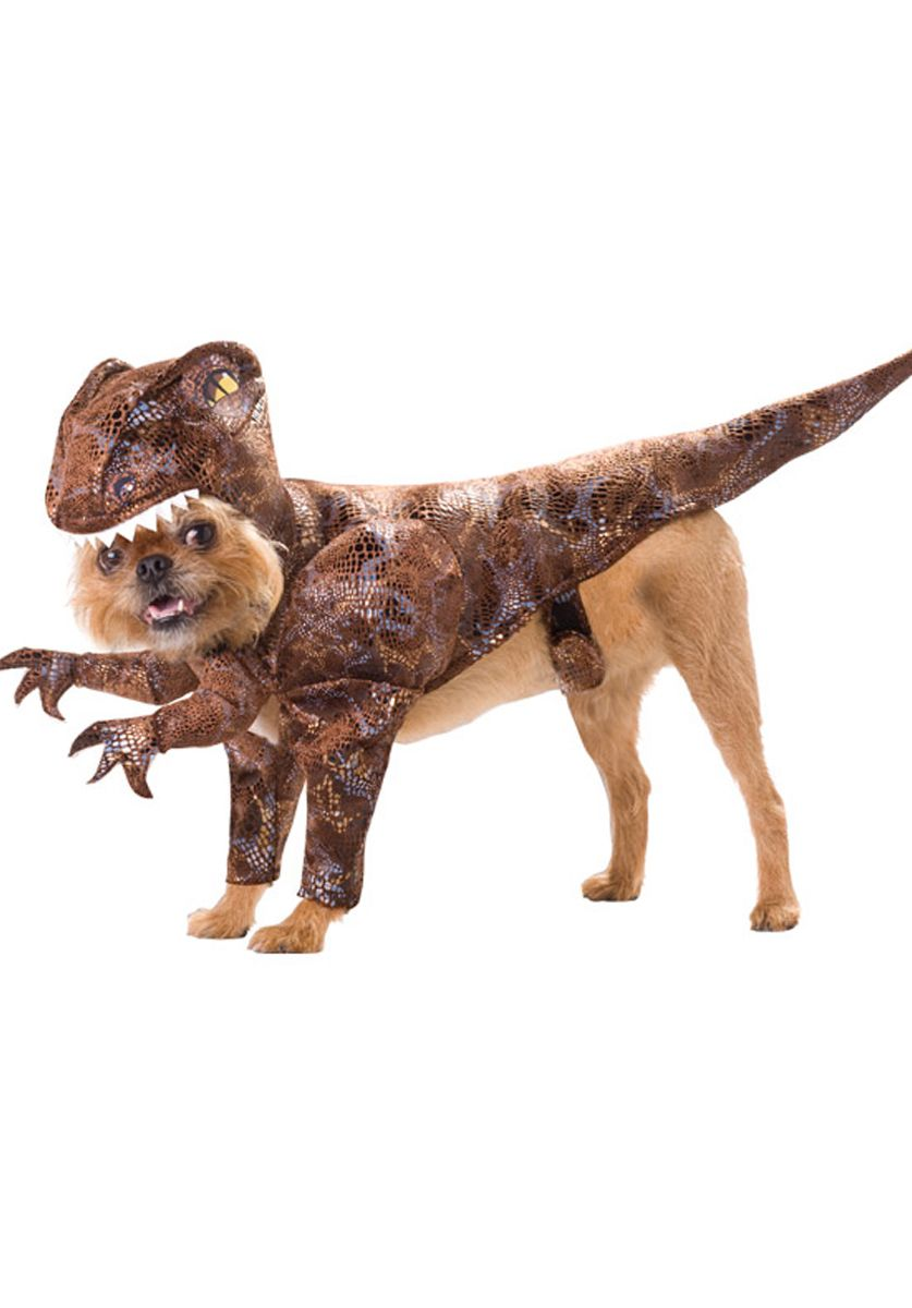Raptor Dog Costume Pet Fancy Dress Costumes At Escapade Uk