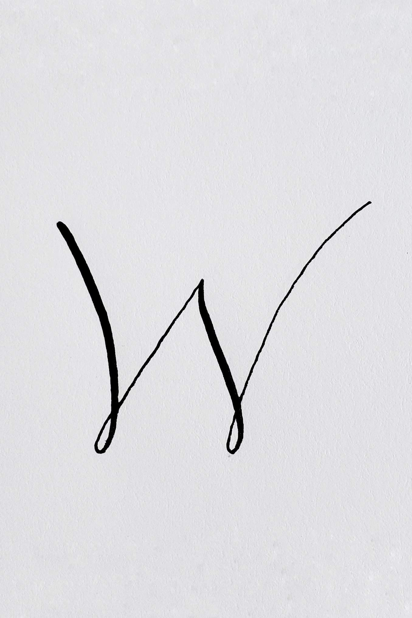 Letter W And Winterberries A Style Study By Letter W Tattoo Lettering Aesthetic Letters