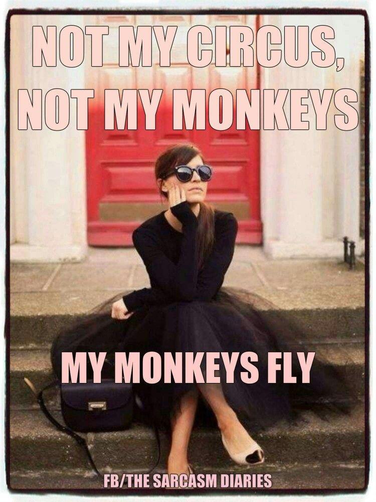 Not my circus, not my monkeys. My monkeys fly.