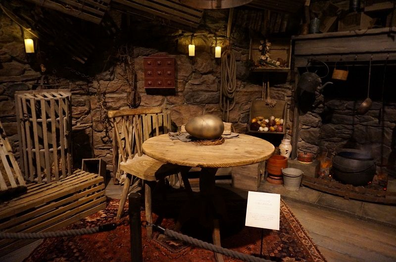 Hagrid 39 s hut google search shoppe pinterest harry What house was hagrid in