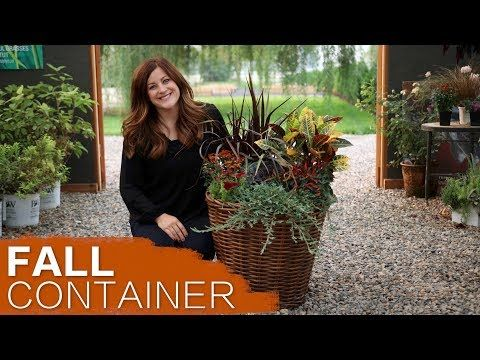 Fall Container Inspiration Full Version Garden Answer
