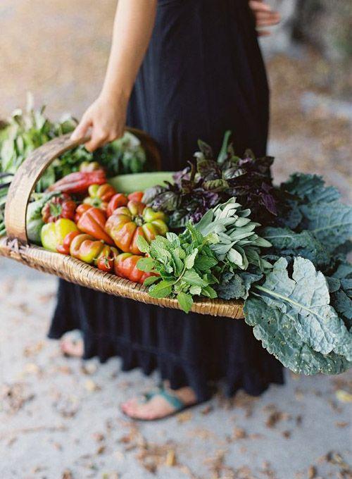vegetable vendor essay