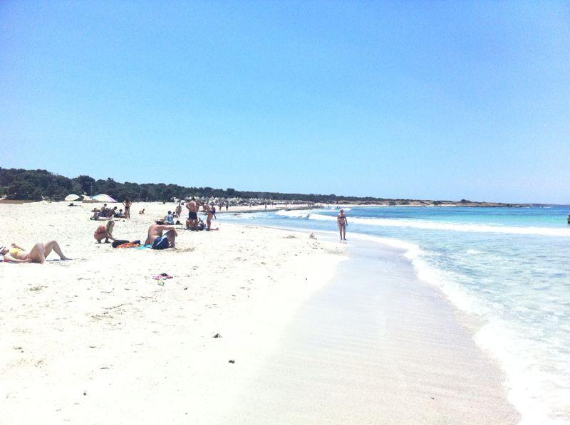Crissi island greece