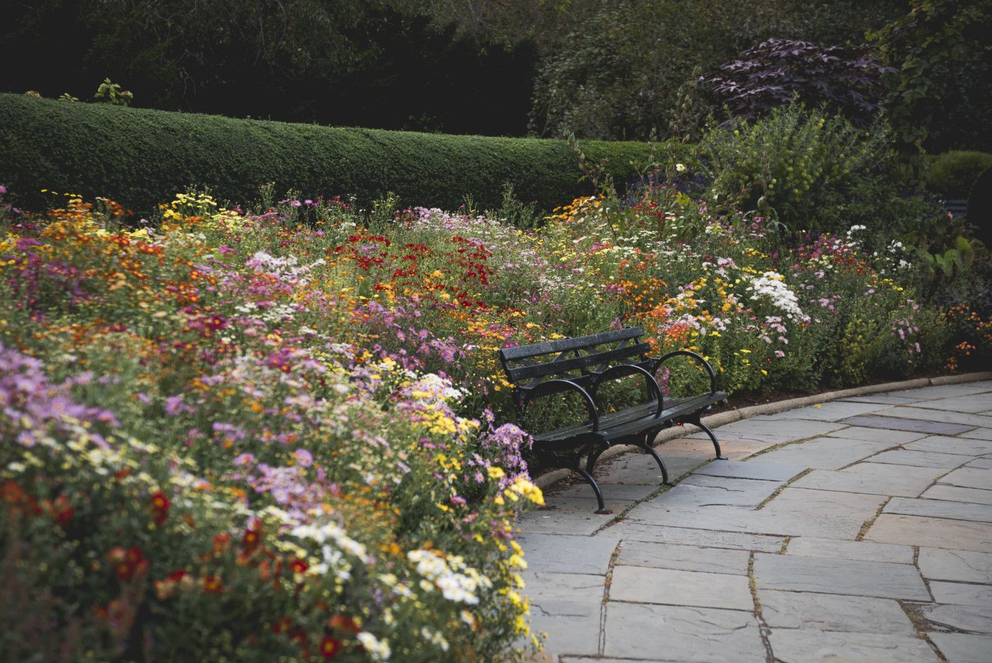 views of the central park conservatory garden in peak fall splendor - Central Park Conservatory Garden