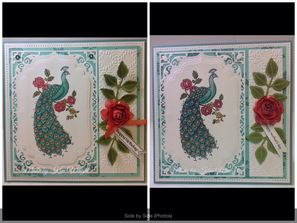 Stampin Up Perfect Peacock. My first and second tries at one of my favorite card designs created months apart. I can't tell if it's the light or just the difference of my camera angle, but the first example looks far superior to the second I think. I used exactly the same color families of every Stampin up product. product.