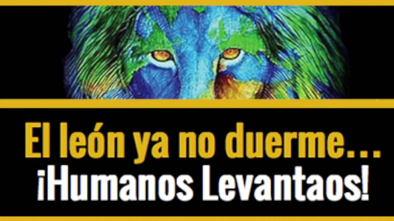 David Icke . El Leon ya no duerme . Humanos Levantaos ! | Places ...