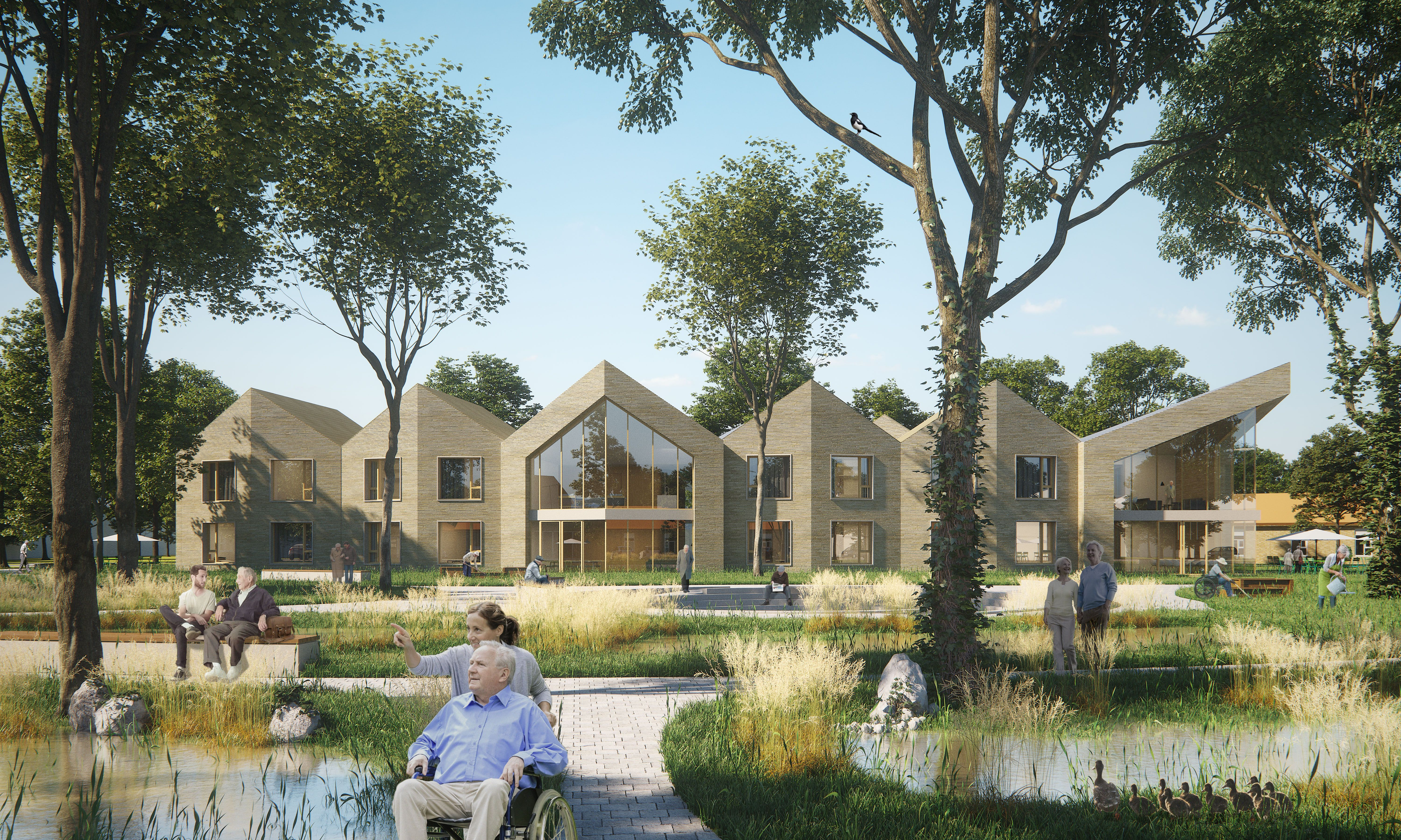 Design competition entry for a new Healthcare building in a park environment in Horst, NL.