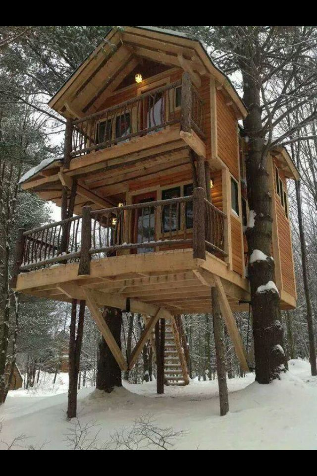 Winter Loft House Bear Proof Cabin Tree House