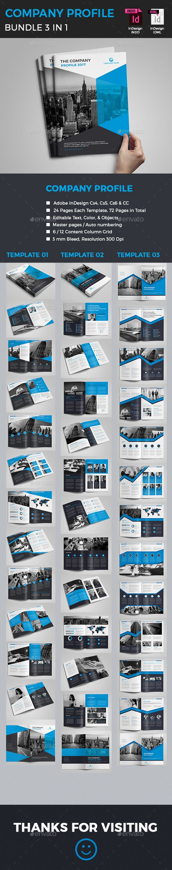 Example Of Company Profile Template Best Company Profile Bundle  Pinterest  Brochure Examples Brochures .