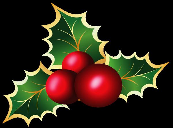 Transparent Christmas Mistletoe Png Picture Christmas Holly Christmas Paintings Christmas Decorations