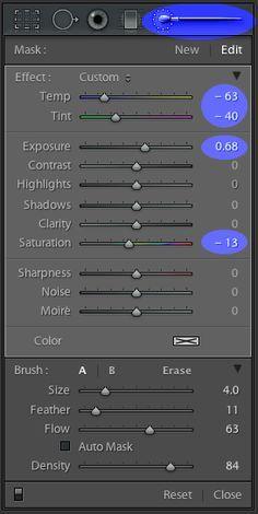 Remove Color Casts Using Lightroom Adjustment Brush | Adobe
