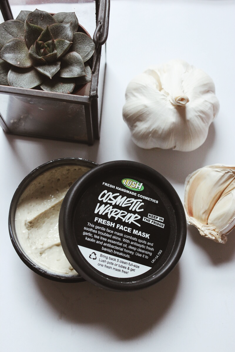 Troubled Skin My Favourite Face Masks From Lush Coconut Oil Skin Care Face Mask Lush