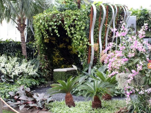Orchids and tropical plants from Singapore define the Silver award ...
