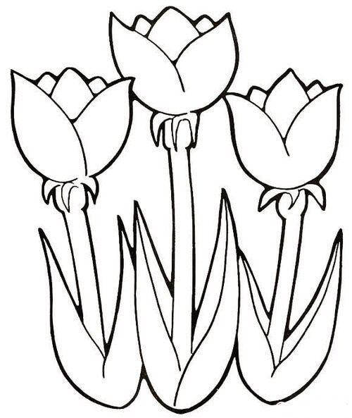 Шаблон букета цветов для вырезания
