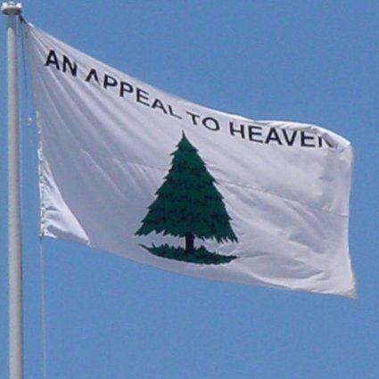 Robot Check Christian Flag Liberty Tree Historical Flags