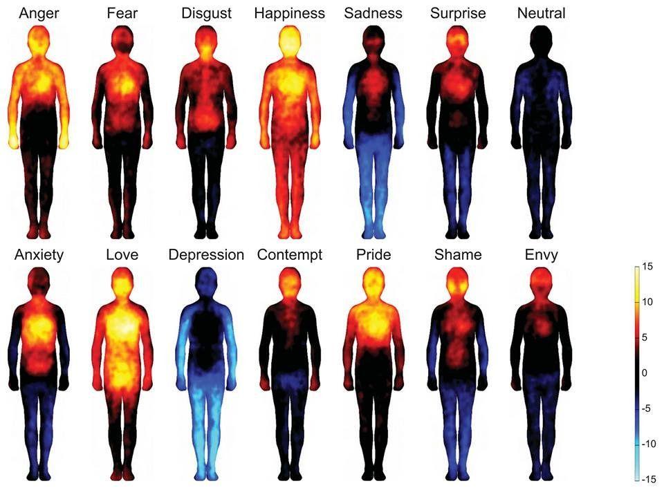 Mapa del cuerpo humano y sus emociones | Buenos consejos emocionales ...