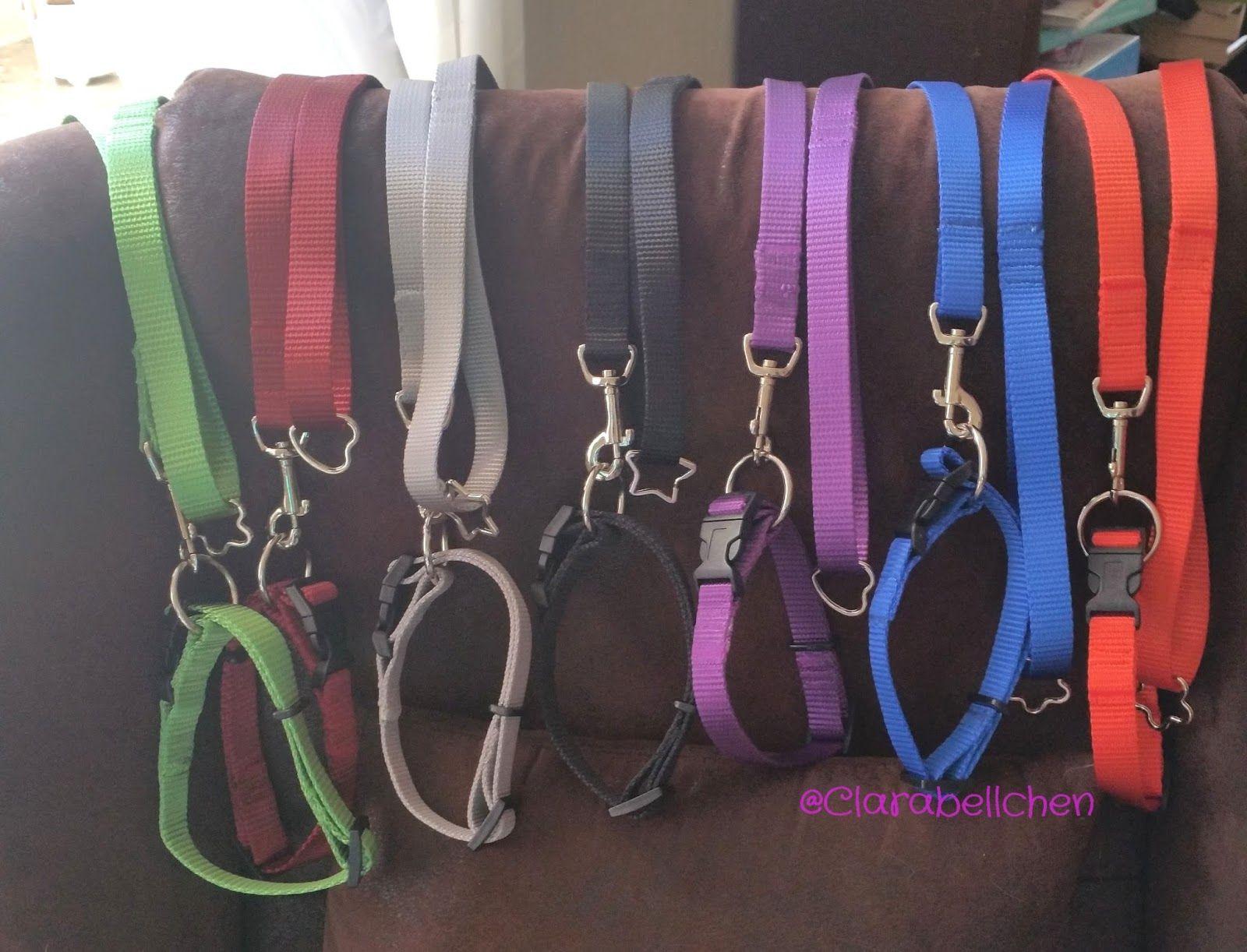 Hundehalsband mit Zugentlastung selber nähen   Katze & Hund ...