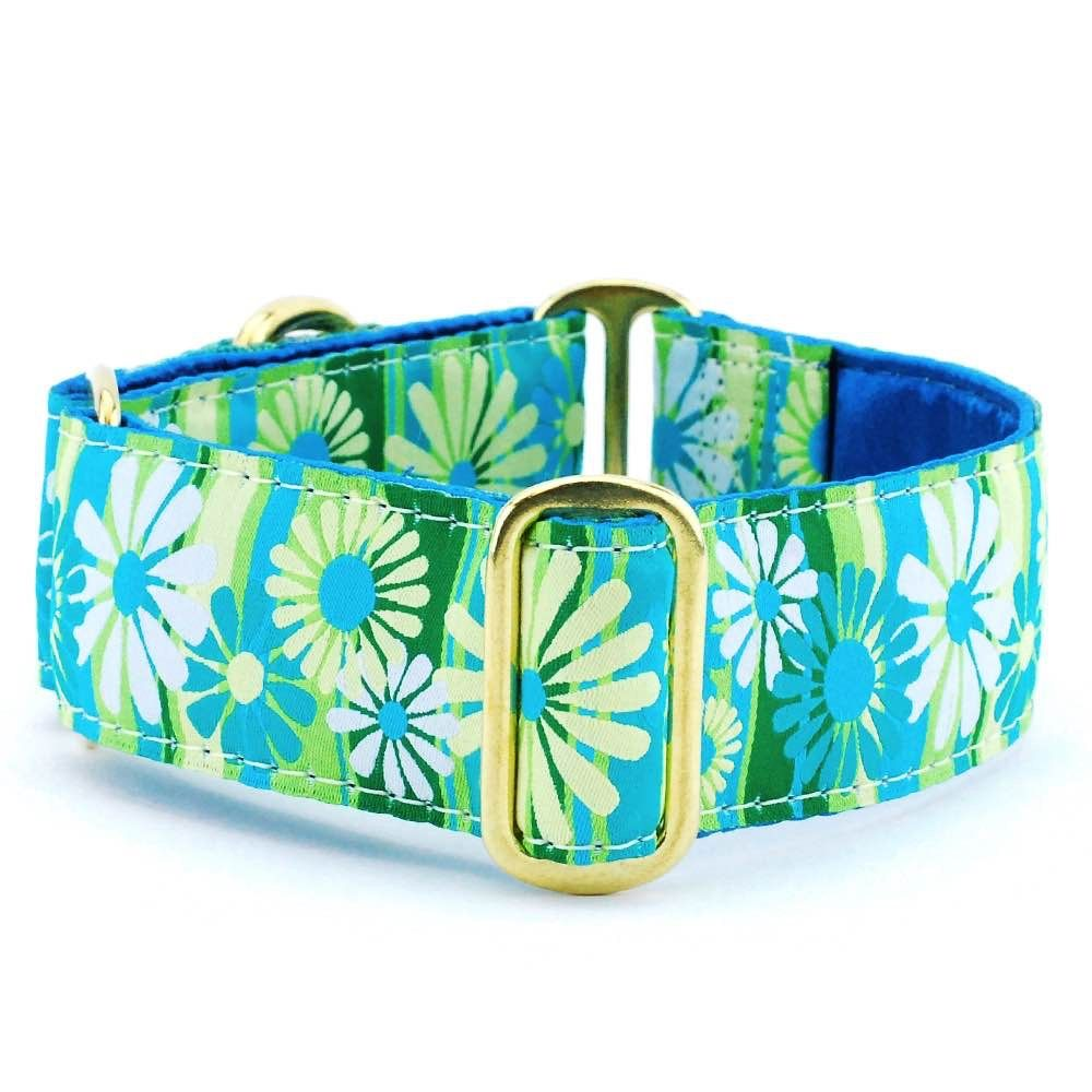 Daisy Stripe Exclusive Dog Collar Shades of teal, Dog