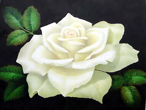 White flowers symbolize the loos of a loved one mainly carnations white flowers symbolize the loos of a loved one mainly carnations but a rose was her favorite flower mightylinksfo