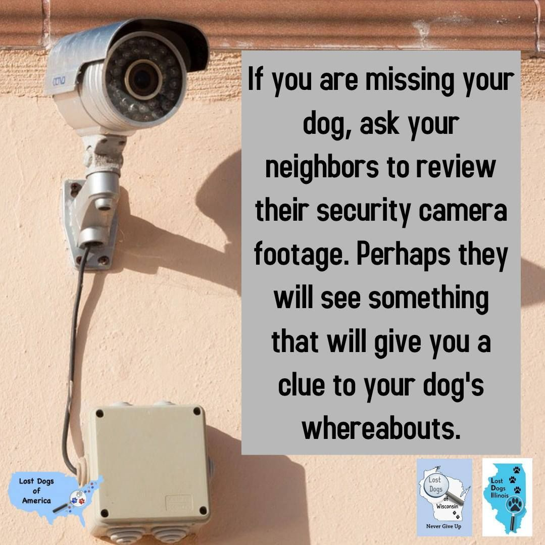 If your neighbors have security cameras, the footage may