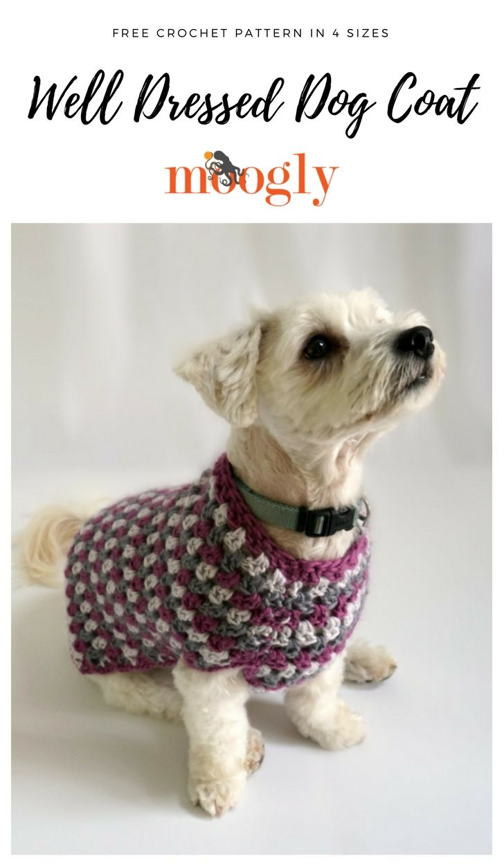 well dressed dog coat free crochet pattern in 4 sizes on