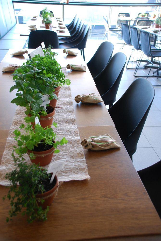 Vasiliki's Very Green Herb Garden - Limani Designs