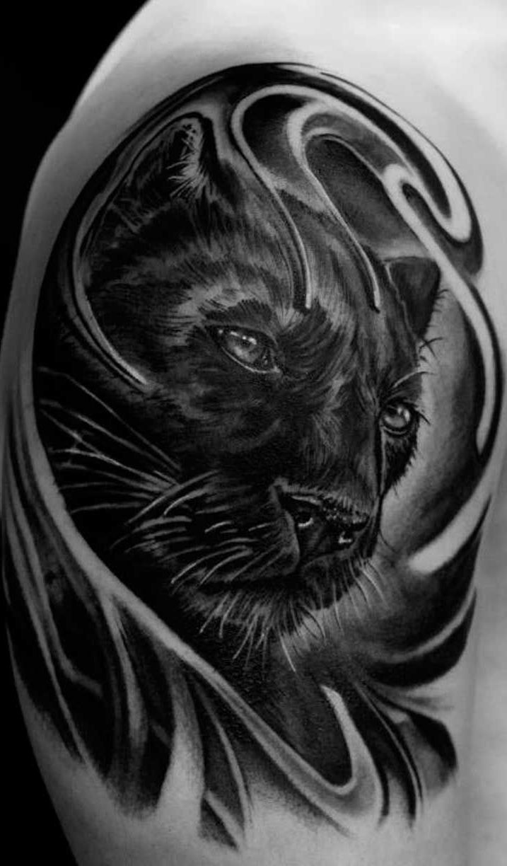 Black-panther-with-wings-1000-ideas-about-black-panther-tattoo-on-pinterest-panther.jpg (717 ...