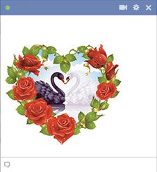 Esta imagem do coração rosado características preto e branco cisnes compartilham de um momento de pura felicidade.