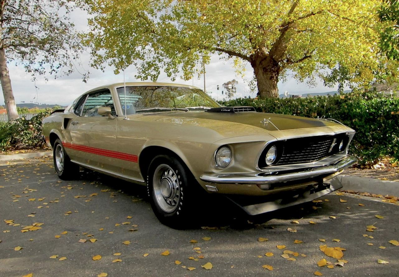 1969 Ford Mustang Mach 1 428 Cobra Jet In Rare Champagne Gold