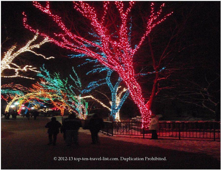 Zoolights Christmas Light Display At The Lincoln Park Zoo In Chicago L Christmas Light Displays Light Display Lincoln Park Zoo
