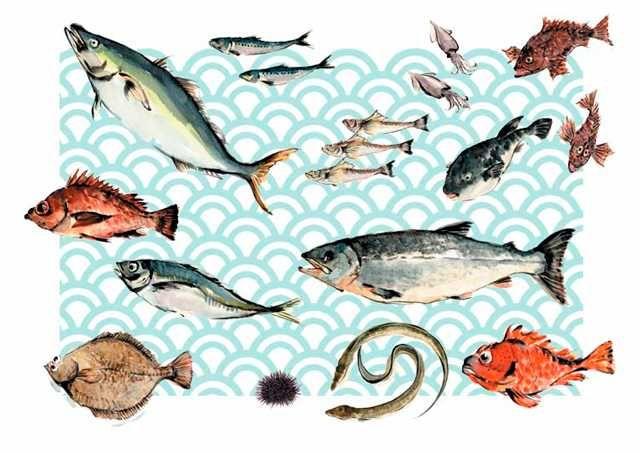 魚介 高塚由子 Yoshiko Taaktsuka 水彩画 Watercolor イラスト 素材 食材 食べ物 魚の絵アイデア 魚 絵 水彩