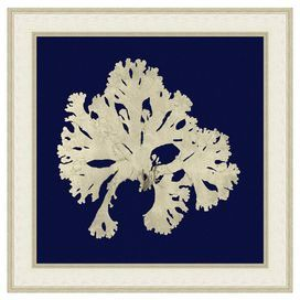 """Depicting a seaweed silhouette against a navy background, this American-made art print offers marine appeal for your walls.  Product: PrintConstruction Material: Paper, wood and glassColor: White and gold frameFeatures:  Printed on archival-quality, 100% acid-free paperMade in the USADimensions: Unframed: 18"""" H x 18"""" W Framed: 22"""" H x 22"""" W"""