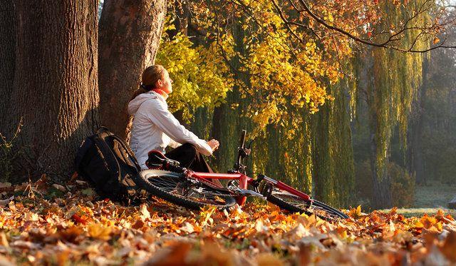 идеи для осенней фотосессии на природе на велосипеде: 20 тыс изображений найдено в Яндекс.Картинках