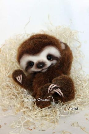 Baby Sloth By Ljudmila Donodina Animals Cute Baby Animals Baby Animals