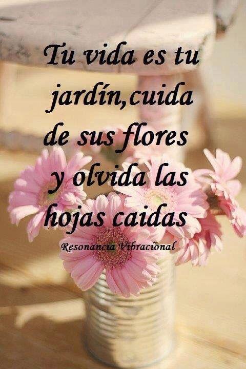 Tu Vida Es Tu Jardin Cuida De Sus Flores Y Olvida Las Hojas