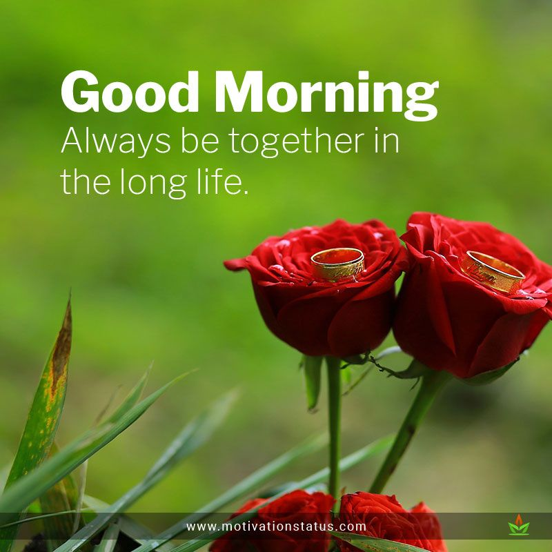 Good morning images quotes free download Good morning
