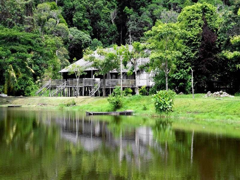 Bako longhouse. Borneo.