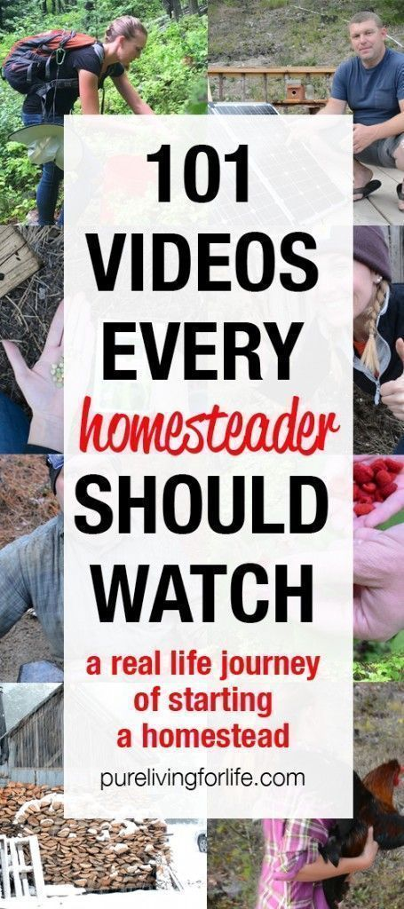 Videos of Our Off Grid Homestead Journey is part of Off grid homestead, Homesteading, Homesteading skills, Living off the land, Homestead farm, Urban homesteading - View all of our homesteading videos where you can see us transition from our life in the city to living off the grid!
