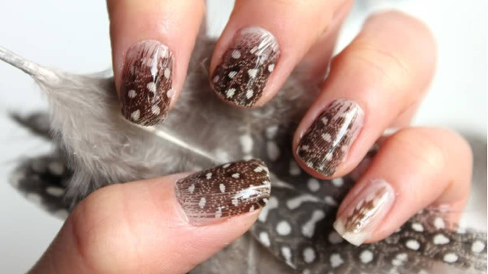 Brown Feather Nail Art Design Idea  nails  Pinterest  Feather