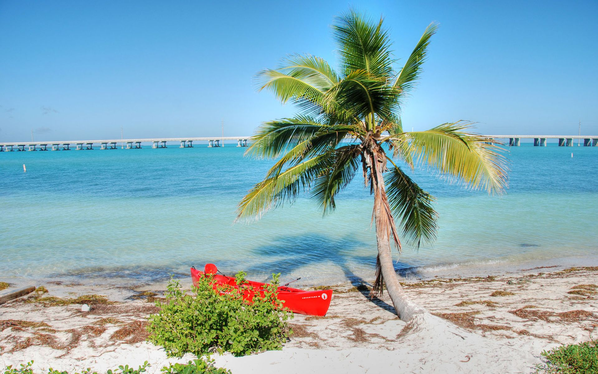 Florida Wallpapers Backgrounds Pictures Photos Laptop Wallpapers West Palm Beach Florida Manasota Key Florida Florida Wallpaper