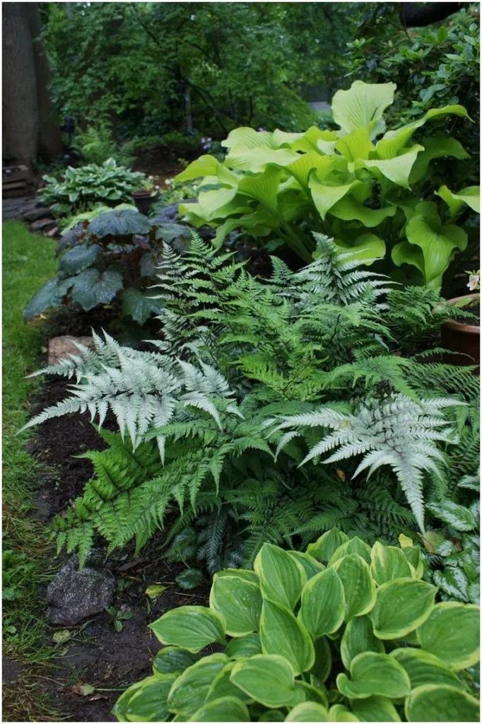 Photo of ✔ 26 beautiful side yard garden path design ideas