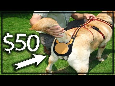 5 Cool Inventions You Can Buy Now On Amazon (Under $50) - YouTube