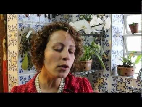 Como Cuidar de Orquídeas - Quantas vezes regar o vaso? - YouTube